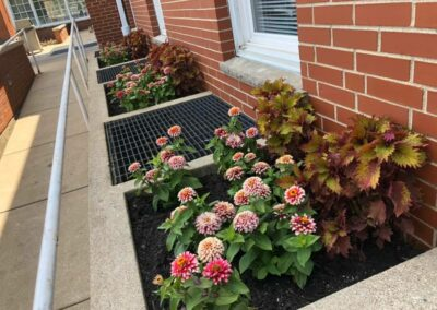 Street View Landscaping